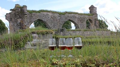 Öl i klosterruinen